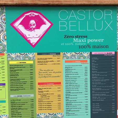 Castor Bellux : photo1.jpg