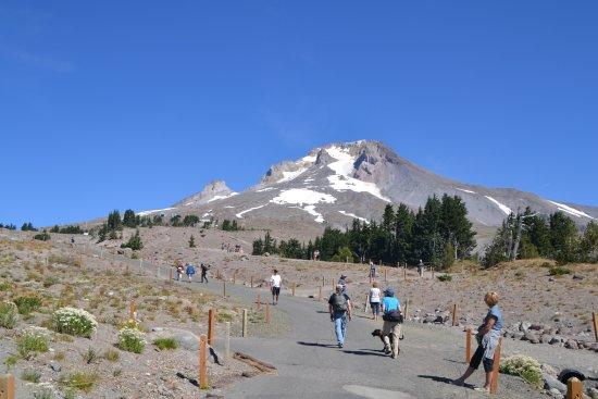 Mount Hood: Mt. Hood
