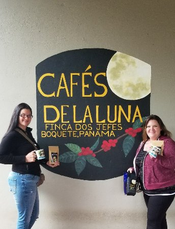 Boquete Coffee Tour: AMAZING TOUR!!