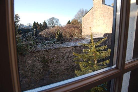 Orange Tree Hotel: View from Room 1