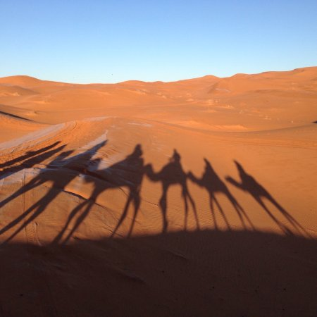 See Around Morocco Photo