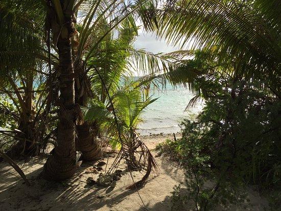 Tikehau Ninamu Resort 이미지