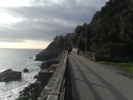 写真Lungomare Europa - pista ciclabile fra Varazze e Cogoleto枚