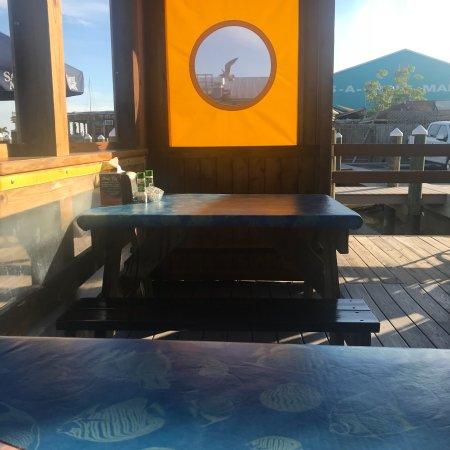 Sea Critters Cafe St Pete Beach Fl