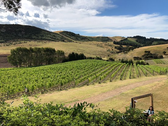 Ilha Waiheke, Nova Zelândia: Stonyridge
