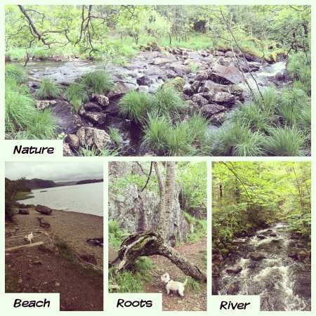 Time Municipality, Norway: Variert natur