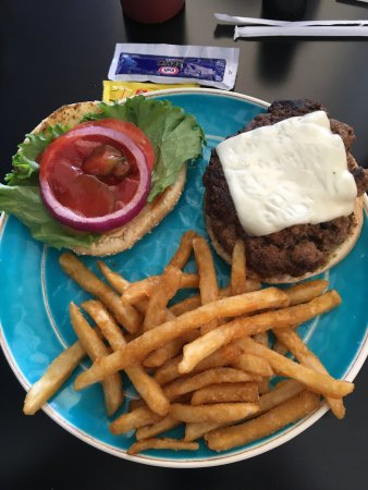Crawfordville, FL: Bison burger w/Swiss cheese and side of french fries