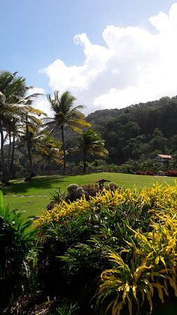Hosanna Toco Resort: 20171219_103337_large.jpg