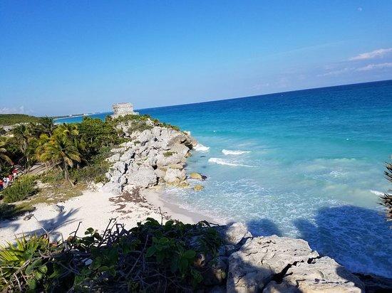 Pro Dive Mexico: 20171229_161438_large.jpg