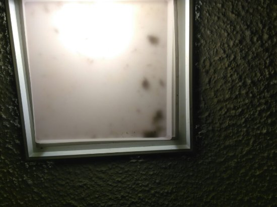 Days Inn by Wyndham Dover Downtown: Smoke detector removed, shower filthy, toilet stained, tile feel off, bud dead bugs in light.
