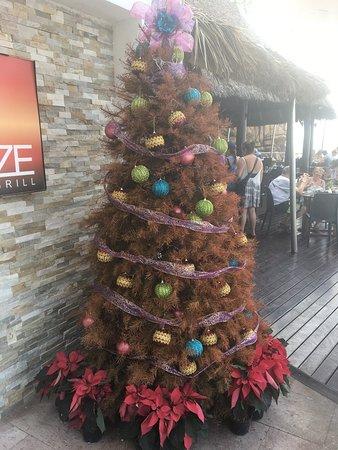 hyatt ziva puerto vallarta dead christmas tree