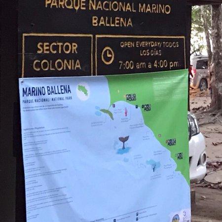 Parque Nacional Marino Ballena Foto