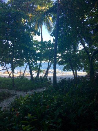 Ylang Ylang Beach Resort: The view from our room, one of the beach bungalows. (#1)