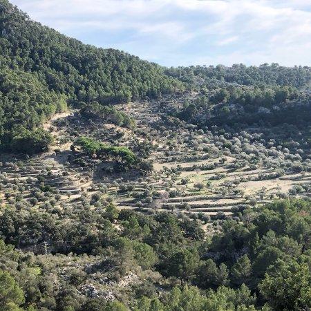 Galilea, إسبانيا: photo1.jpg