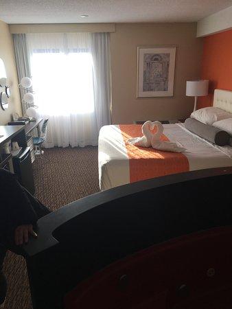 Howard Johnson Hotel by Wyndham by the Falls Niagara Falls: king bed