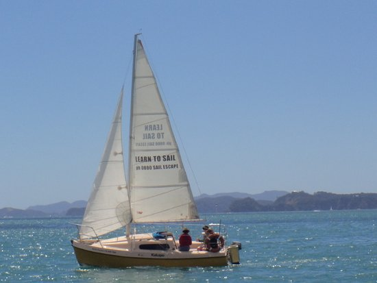 Opua, นิวซีแลนด์: One of our Davidson 20s out on a learn-to-sail adventure.