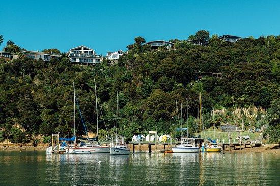 Opua, นิวซีแลนด์: Some of the fleet at the dock.