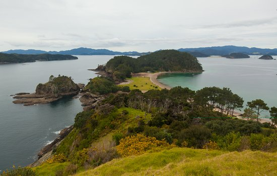 Opua, نيوزيلندا: Motuarohia Island (Roberton), a great place to anchor for a picnic lunch.