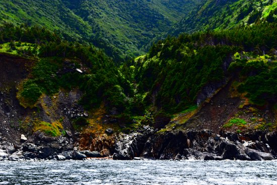 Bay St. Lawrence, Canadá: Beautiful and wild places along the tip of Cape Breton