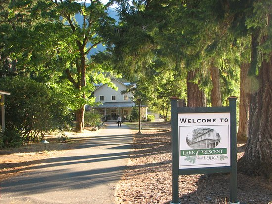 The Path to Lake Crescent Lodge