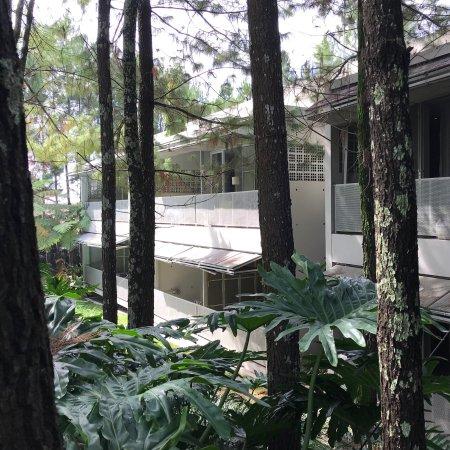 Bumi Bandhawa Hotel : photo1.jpg