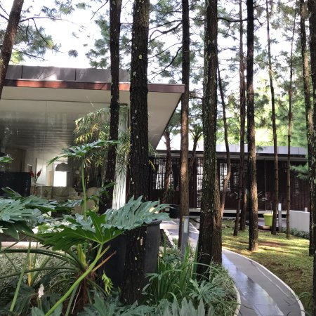 Bumi Bandhawa Hotel : photo3.jpg