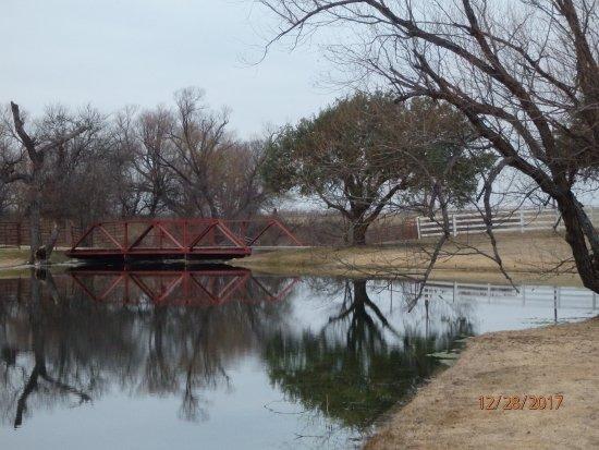 Bilde fra Grandview