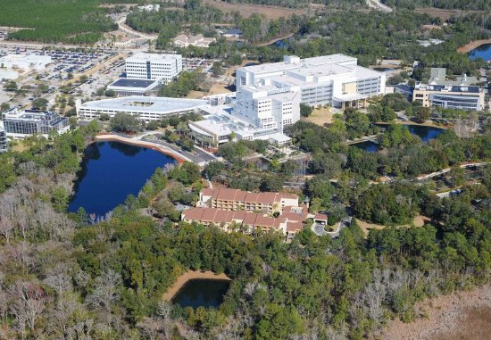 Mayo Clinic Jacksonville Fl Hotels