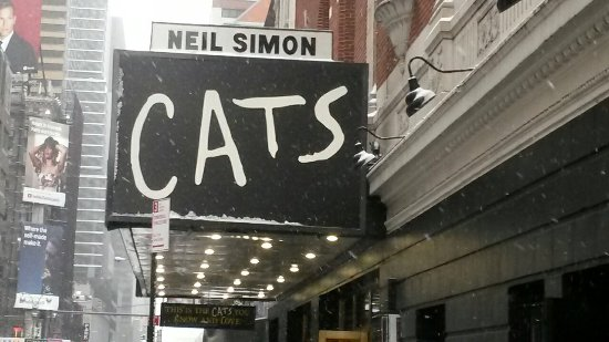 Neil Simon Theatre: 20171230_130854_large.jpg