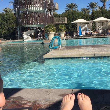 Hyatt Regency Scottsdale Resort and Spa at Gainey Ranch: photo1.jpg