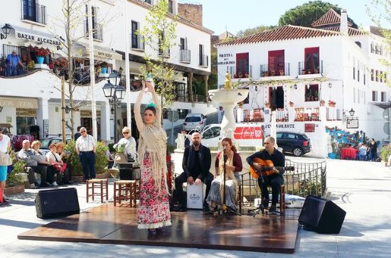Privat halvdagstur i Mijas Pueblo fra...