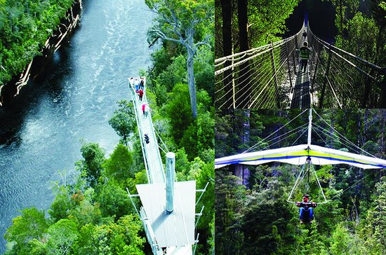 Tahune Airwalk Admission with Optional Cable Hang Gliding From...