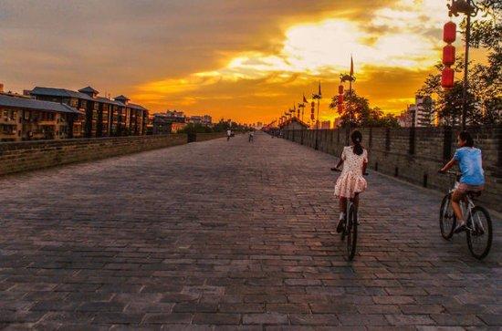 Privat tur: Xi'an City Highlights