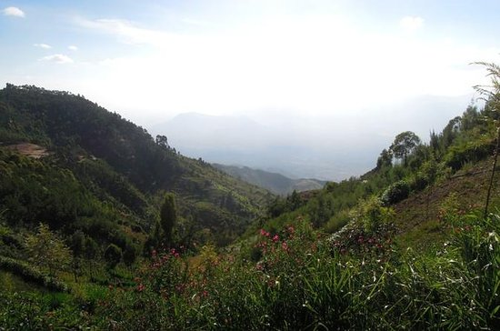 4-Day hiking tour to Usambara...