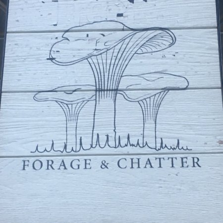 Forage & Chatter