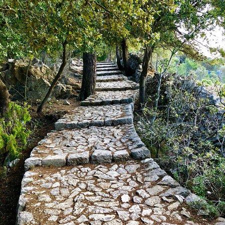 Castell d Alaro : photo9.jpg