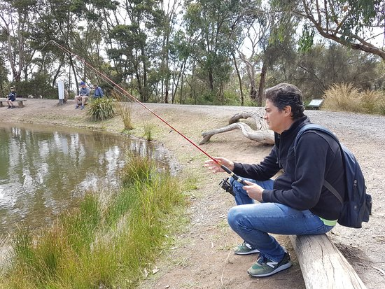 Rhyll Trout and Bush Tucker Farm: outdoor lake fishing