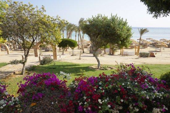 منتجع شاطئ كاليميرا حبيبة: Balkon