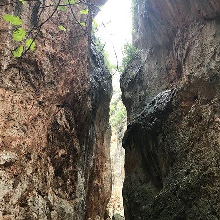 Parque natural de la Sierra de Grazalema : photo1.jpg