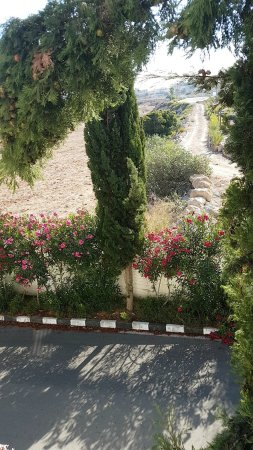 Akti Beach Village Resort: Snapchat-257893452_large.jpg