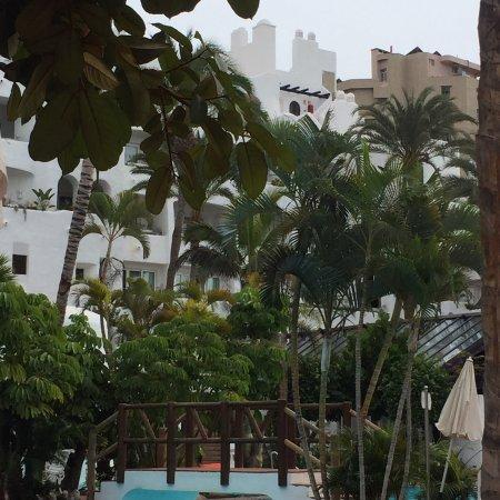20171226 171944 bild von hotel jardin tropical for Jardin tropical tenerife tripadvisor