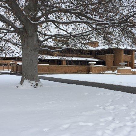Frank Lloyd Wright's Darwin D. Martin House Complex: photo0.jpg