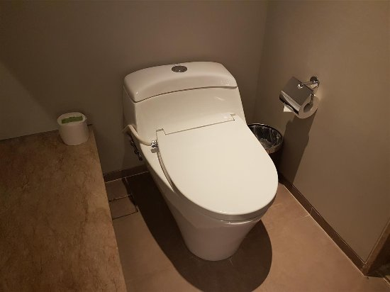 Toilet With Bidet Seat Cover Picture Of Courtyard By