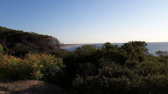 B&B Andrea e Valentina: Depuis la terrasse, vue sur la baie avec la plage d'Is Arenas au fond