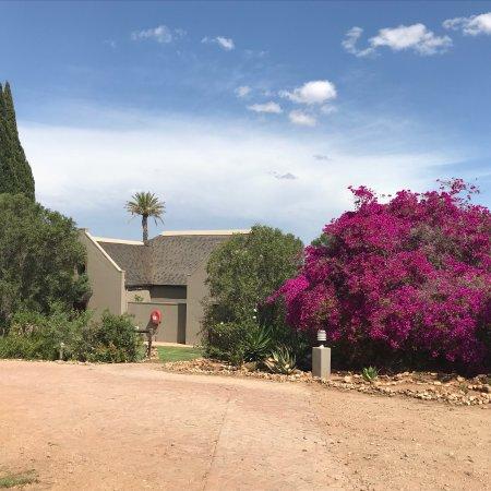 Thabile Lodge: photo8.jpg