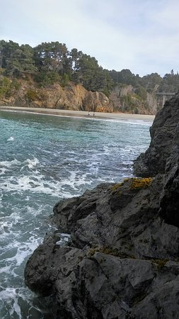 Jughandle State Reserve: 20171230_113514_HDR_large.jpg