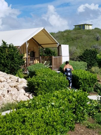 The Natural Curacao Here is our gl&ing safari tent - absolutely awesome & Here is our glamping safari tent - absolutely awesome - Picture of ...
