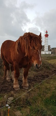 Pointe Saint Mathieu : 20171231_172517_large.jpg