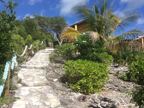 Shannas Cove Resort Restaurant: 100 or so steps up from the beach