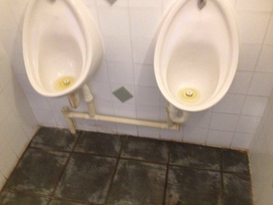 Elham, UK: Urinals blocked , overflowed on floor